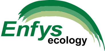 Enfys Ecology is an environmental consultancy based in Bangor Wales