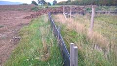 Newt fence