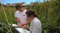water vole surveys 2
